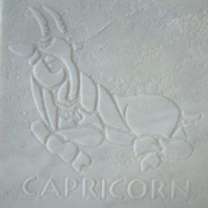 M-CAPRICORN