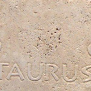MTB-TAURUS